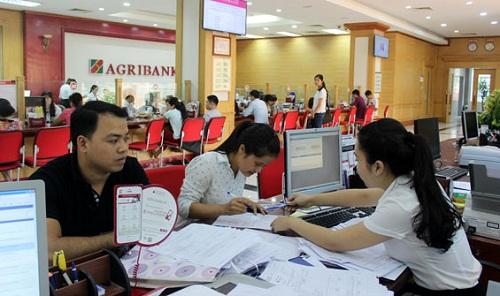 Vay tín chấp bảo hiểm nhân thọ ngân hàng Agribank không thế chấp